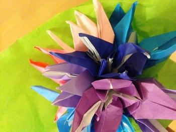 flower2 (640x480).jpg